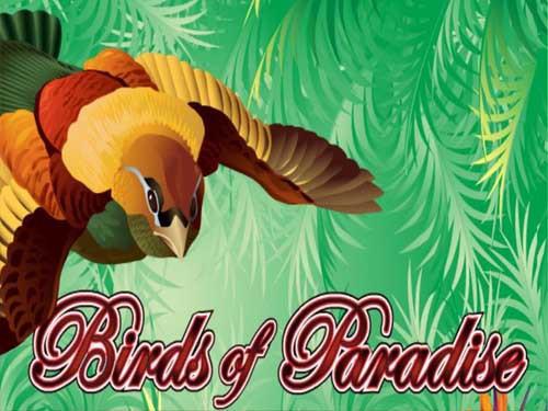Birds of Paradise Slot