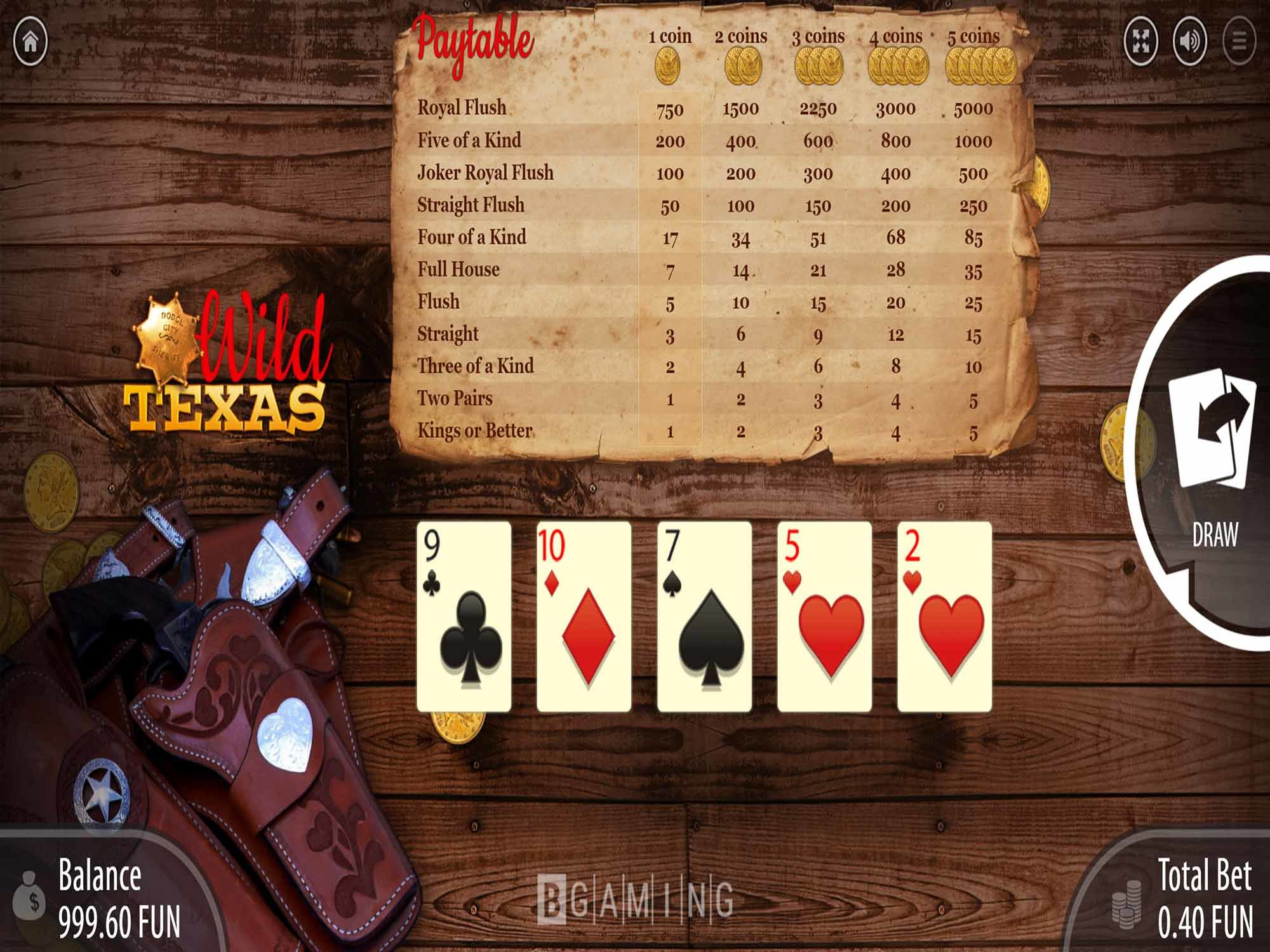 Wild Texas by Bgaming screenshot