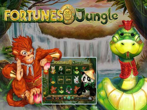 Fortunes of the Jungle