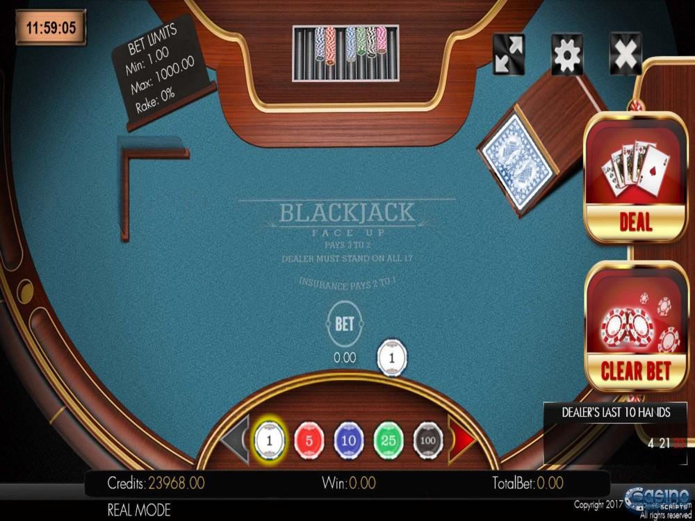 Blackjack 21 Faceup 2D Game by CasinoWebScripts screenshot