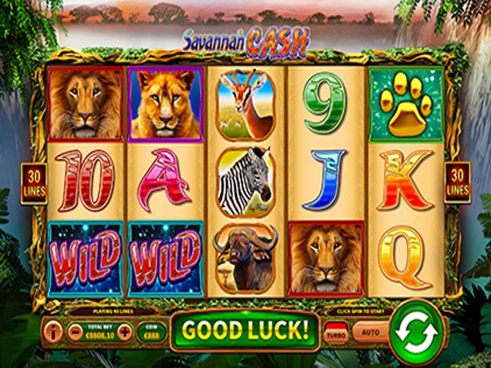 Spiele Savannah Cash - Video Slots Online