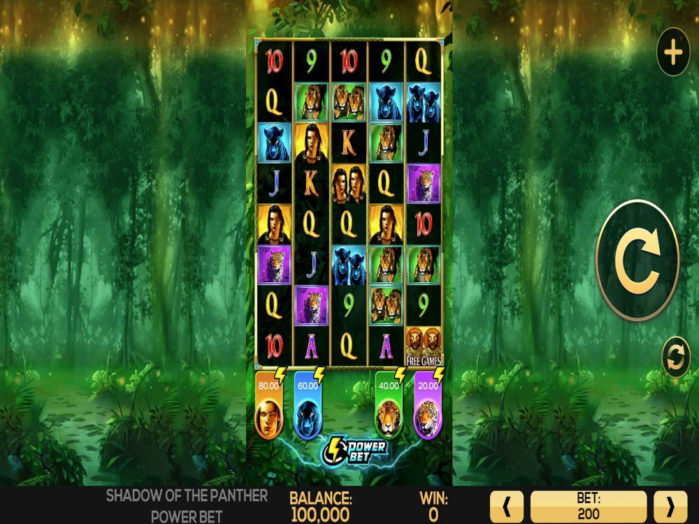 Shadow Of The Panther Power Bet Slot Machine