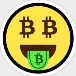 TheBitcoinInvestor