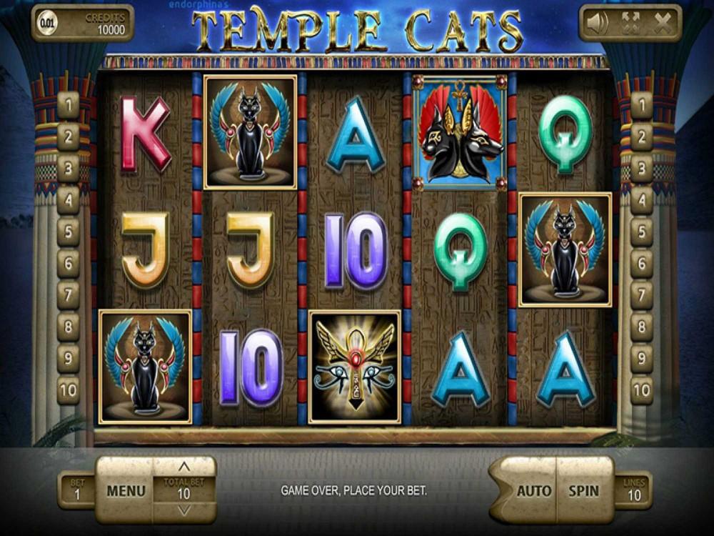 Temple Cats Slot screenshot